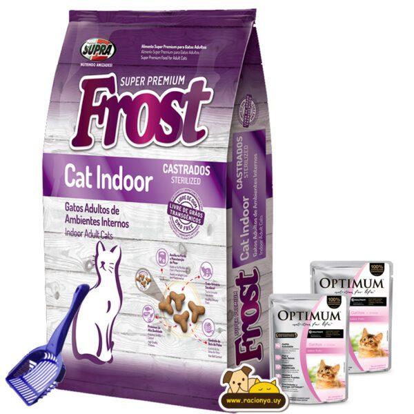 frost cat indoor racionya