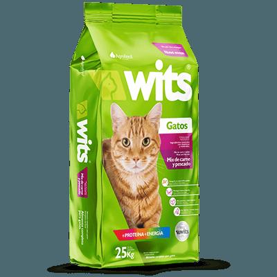 wits gato