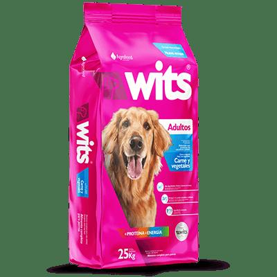 wits perro adulto