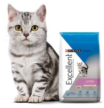 Purina Excellent Kitten Chicken and Rice 1