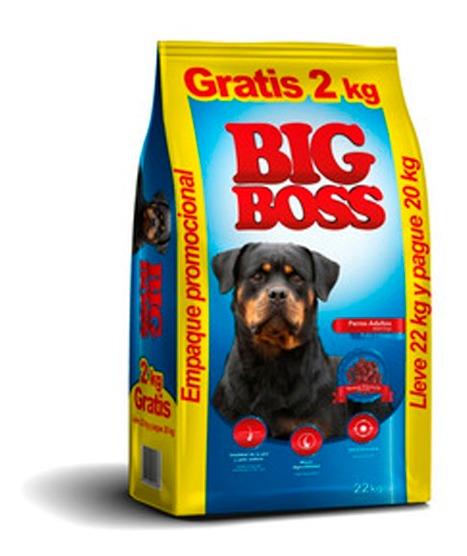 big boss adulto 20 kg D NQ NP 868702 MLU42825742182 072020 F