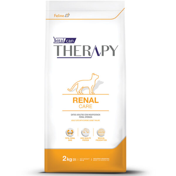 therapy feline renal care